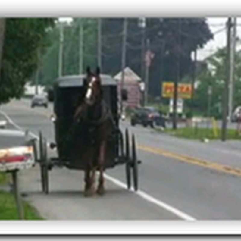 Amish Genomics Study – Potential New Territory for cholesterol drug development